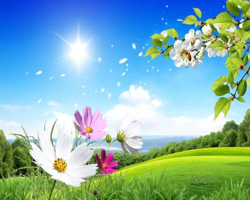 primavera-ev