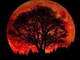 luna-autunno