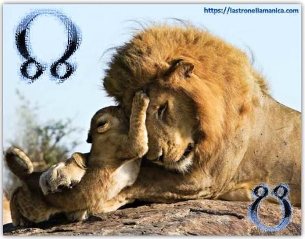 leone.nodo