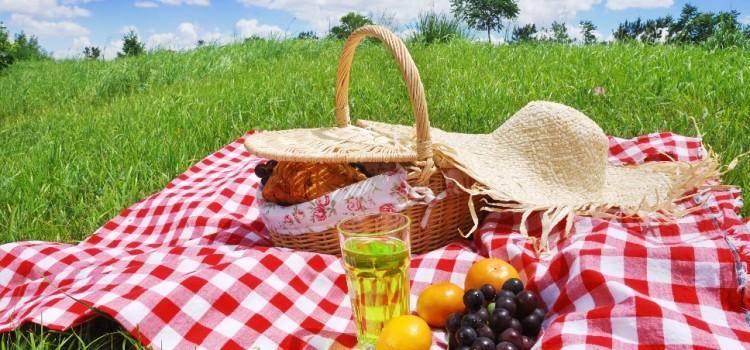 picnic-750x350